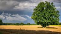 Letní počasí, ilustrační foto