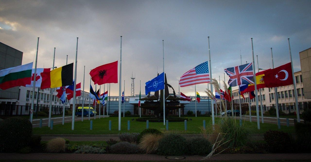 Společným seskokem českých a polských parašutistů s vlajkami dnes na letišti v Mošnově na Novojičínsku začaly dvoudenní Dny NATO a Dny Vzdušných sil Armády ČR. Po oba dny je v osmihodinovém programu připraveno mnoho dynamických ukázek na zemi i ve vzduchu.